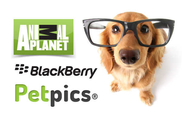 Animal Planet – Blackberry App – Petpics